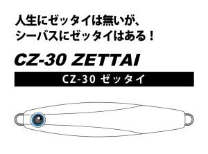 CZ-30-WEB-POP